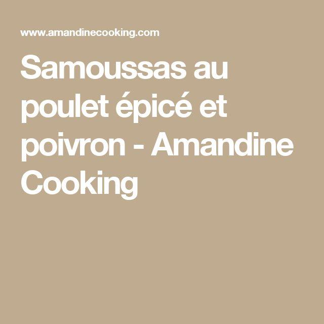 Samoussas au poulet épicé et poivron - Amandine Cooking