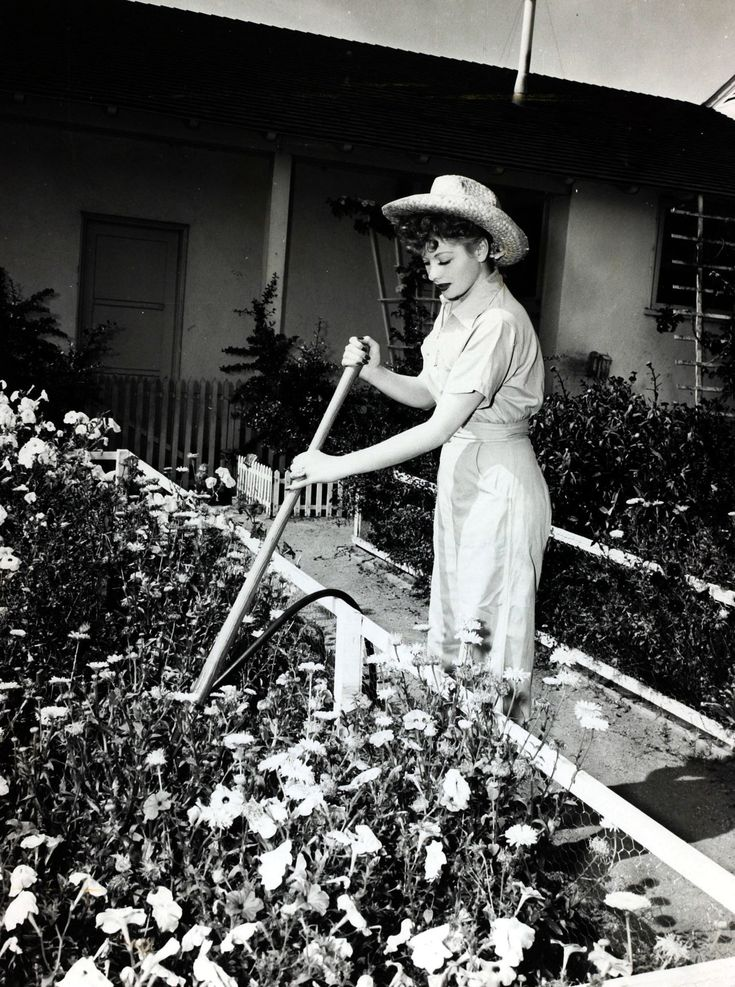 Life at Home With Lucille Ball - Vintage Photos Of Lucille Ball