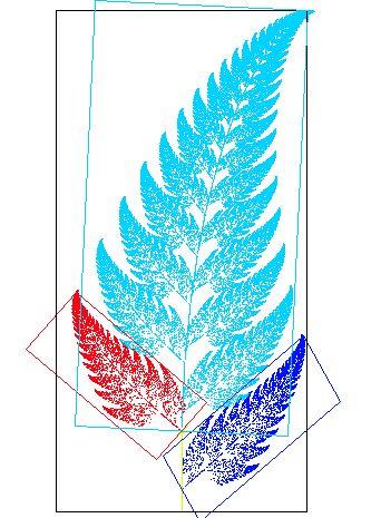 Fractal fern explained