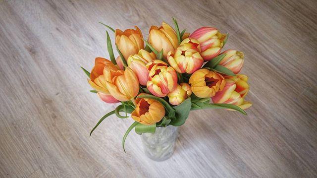 Ez a mi napunk, Hölgyeim! Boldog Nőnapot! ❤💐 #internationalwomensday #tulipbouquet #homedecor #freshflowers #tulips #spring #flowerbouquet #happiness #mik