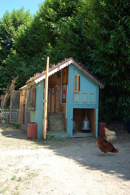 Ingela Wanerstrand's coop, Seattle, WA as seen on the Seattle Tilth chicken coop tour