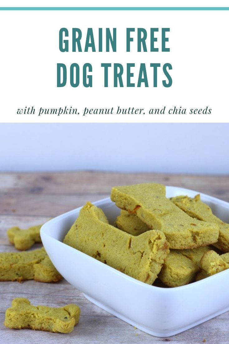 Grain Free Dog Treat Recipe With Flax Seeds Pumpkin Dog Treat
