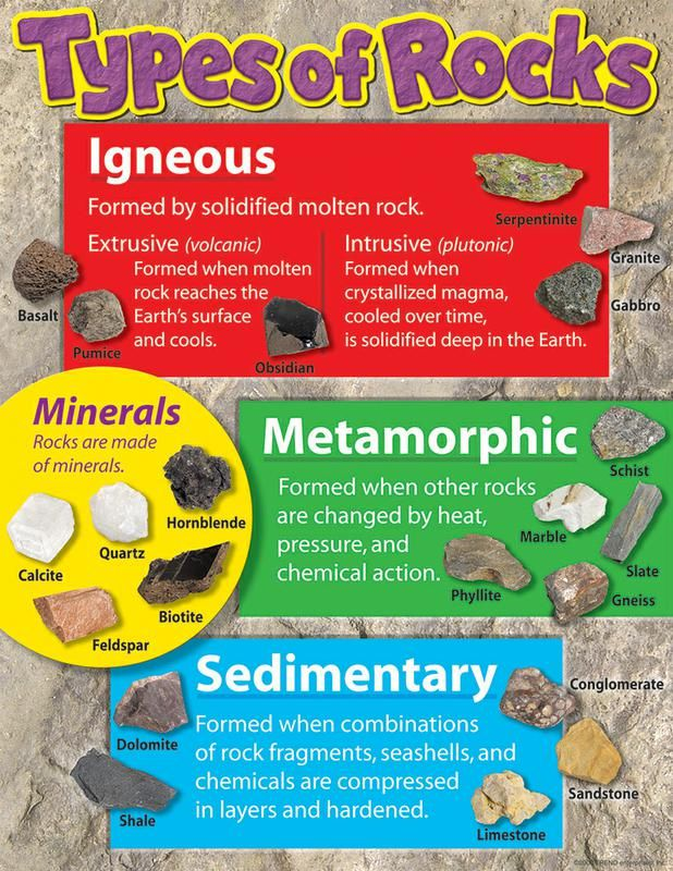 "Provide an introduction to igneous, metamorphic, and sedimentary rocks, plus minerals, with the photos on this chart. Extra value on back: reproducibles, tips, and teaching information. 17"" x 22"". Sturdy and durable."