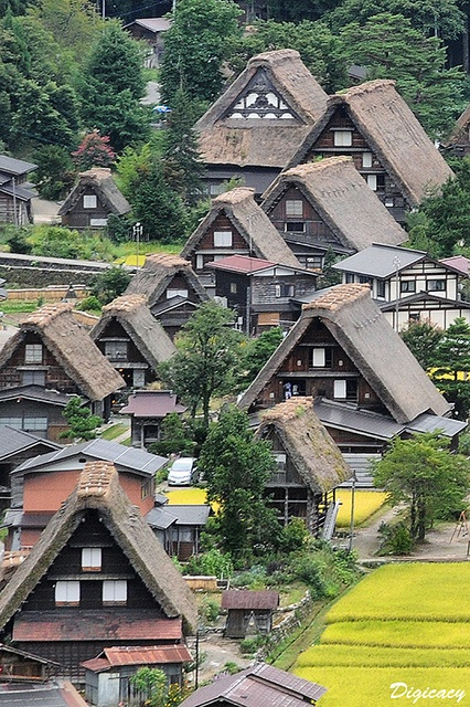 the World Heritage Shirakawa Village, Japan