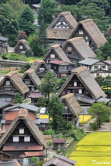 the World Heritage Shirakawa Village, Japan