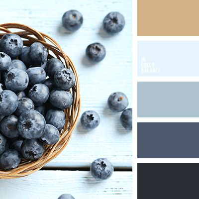 бежевый, голубой, оттенки голубого, подбор цвета для гостиной, подбор цвета для дизайнера, серебристый, синий, цвет дерева, цвет шерсти, цветовое решение для декора, цветовое решение для ремонта, яркий голубой, яркий синий.