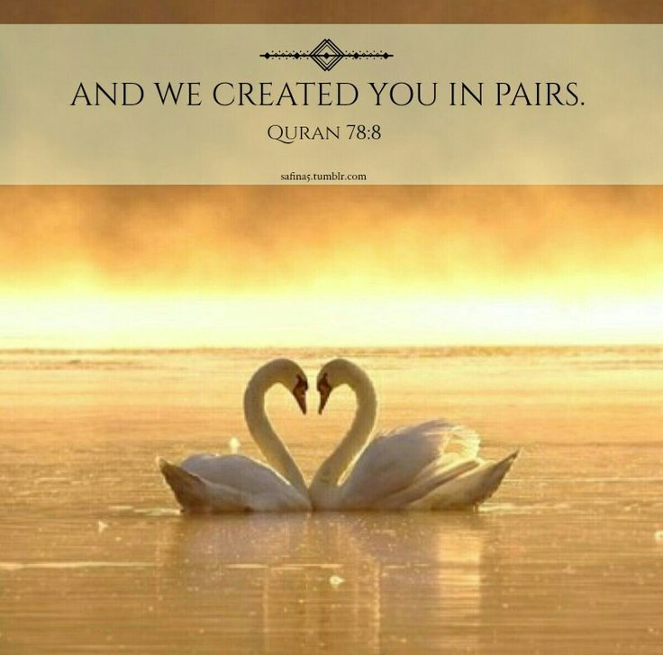 We were created in pairs.