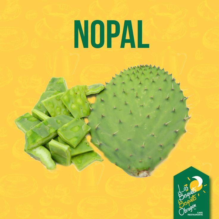 El nopal está compuesto en un 80% de agua, por lo que es uno de los alimentos más hidratantes para nuestro organismo. #SabíasQue #LBBO #BisquetsObregón