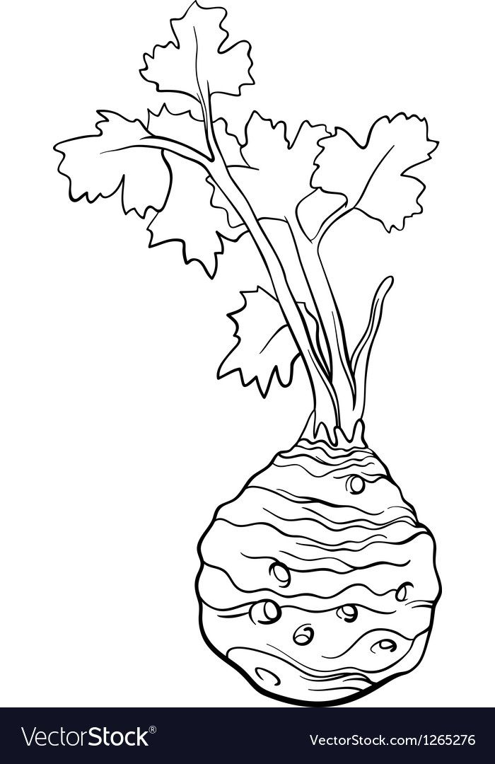 Celery Vegetable Cartoon For Coloring Book Vector Image On