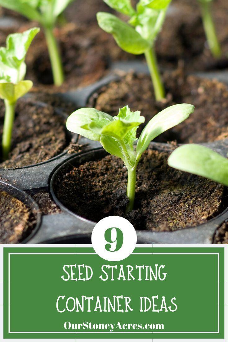 71772e984d9e81fffb077afb67ea62d9 - Is Castor Oil Safe For Vegetable Gardens