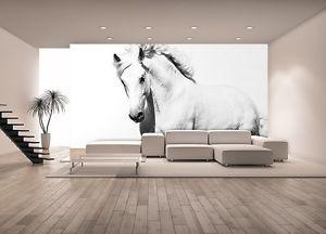 Fotografia-Mural-Papel-Tapiz-Blanco-Caballo-Mustang-Gigante-Decorativo-Cuarto-De