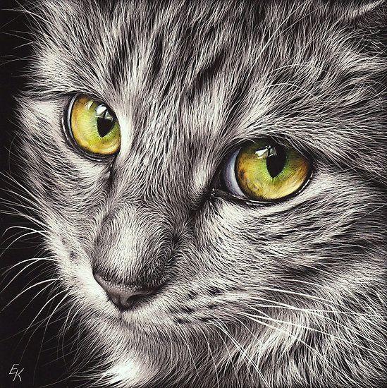 Kitty by Melbourne Artist Elena Kolotusha - mixed media scraper board
