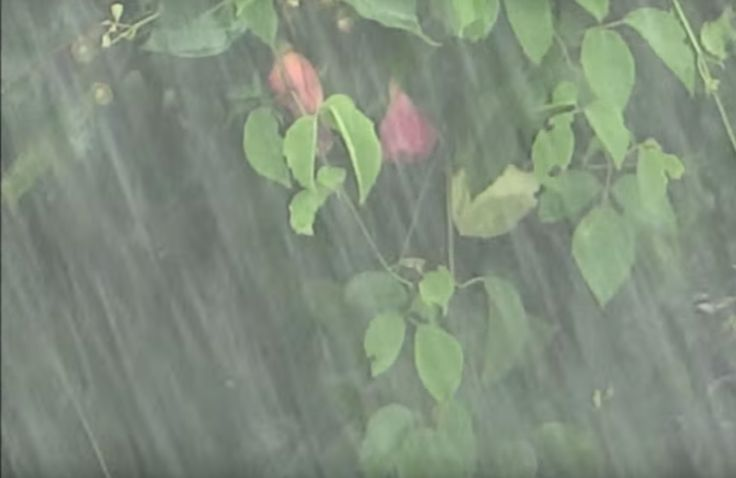 nice #Extremely HEAVY RAIN video - 10 hour sounds  Relaxation Meditation Study Concentration Yoga Spa -VIDEO