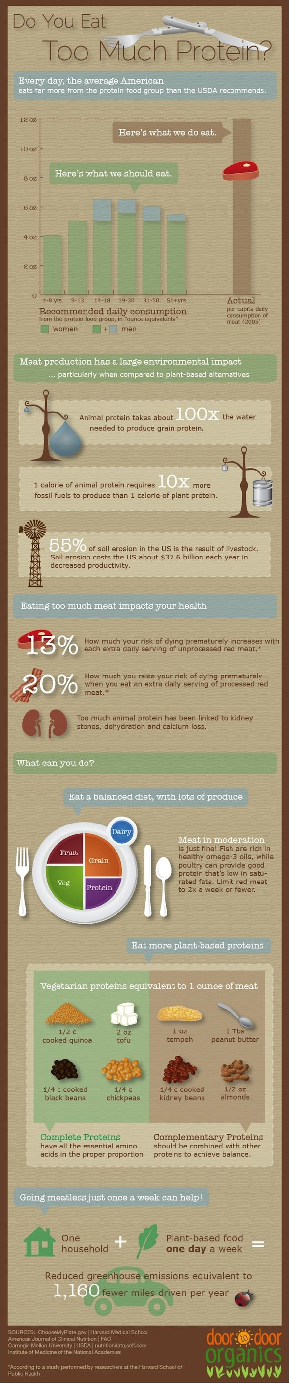 Infographic: The Truth About Protein