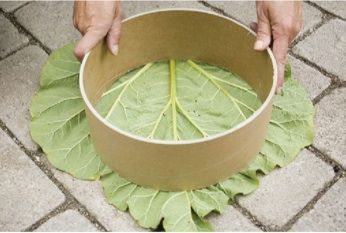 """Garden stone 