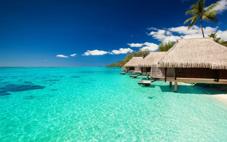 Free HD Wallpapers for your computer: Bungalows on the sea to the maldives