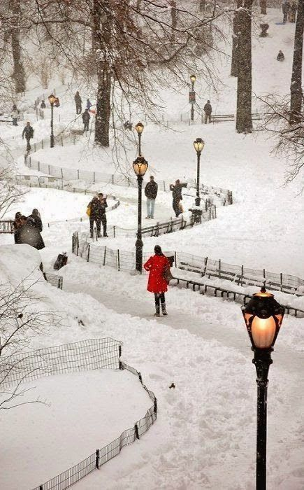 """expression-venusia: """" Snowy Central Park ~ Expression Photography """""""