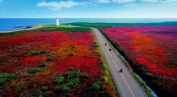 L'automne sur l'île Miscou, Nouveau-Brunswick Canada
