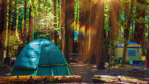 As a kid, camping trips just magically happened, but now that I'm an adult it turns out there's actually planning involved, including making campground reservations. And most of California's popular spots fill up six months in advance, so it's...