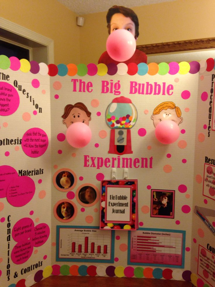 bubble gum science project Be scientific several variables, including flavor and bubble size, can be the subject of bubble gum science experiments use the scientific method to create, conduct.