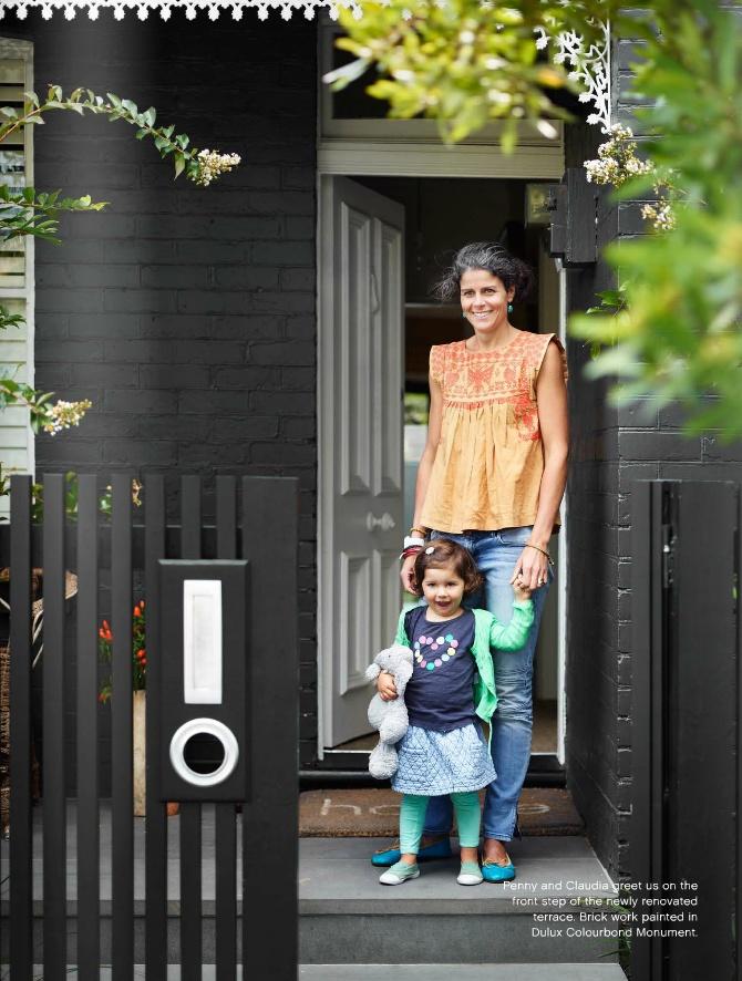 House colour/fence vertical concept
