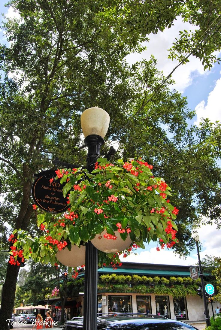 Personals in winter park florida