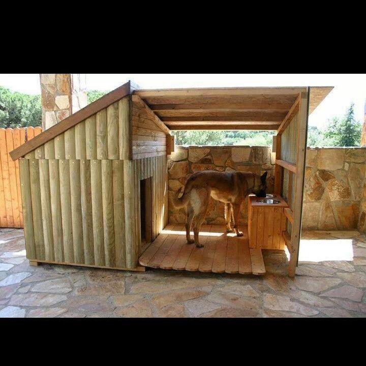 Best dog House design