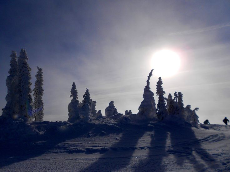 Snow ghosts at Big White, Vancouver, Canada. (2015)