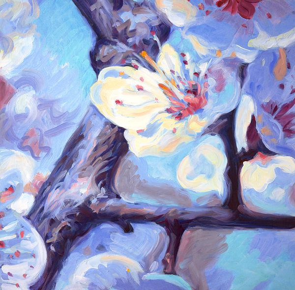 """Natural Fragrance"". Cherry tree in bloom. Oil painting by Dusan Balara"