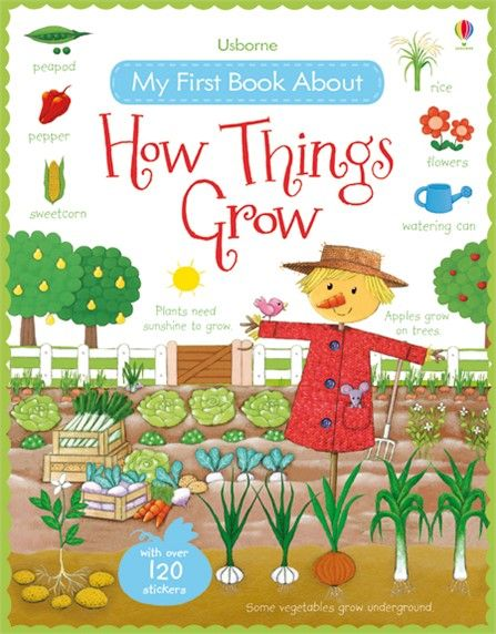 17 Best Images About New Usborne Books L August 2015 On Pinterest Vocabulary Words Activities