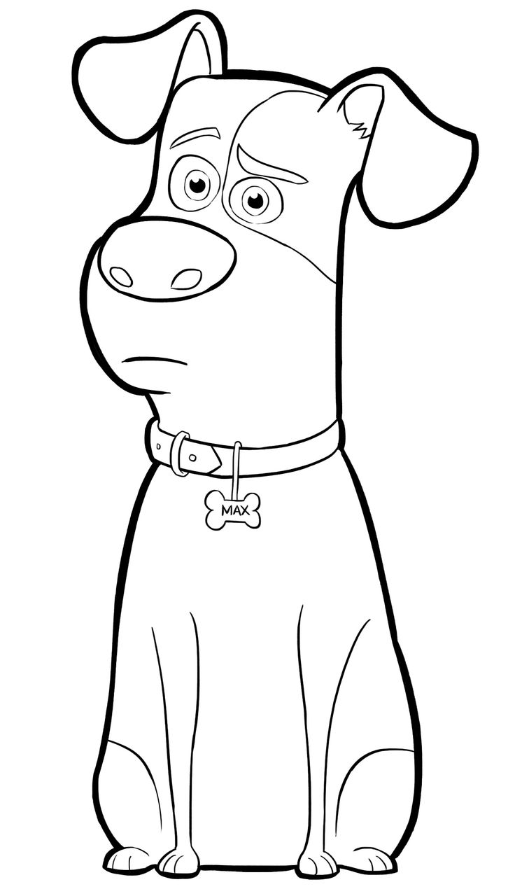 It's just a graphic of Playful Secret Life of Pets Printables