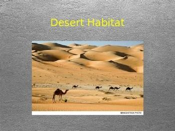 Are you teaching a habitats unit and looking for more content?  This power point was created as a brief introduction to the desert habitat for second graders.  As we explore desert locations, desert environments, plants, animals, and other interesting facts about deserts, we also discuss animal adaptations and how living organisms depend on one another for survival!-A 'n' F