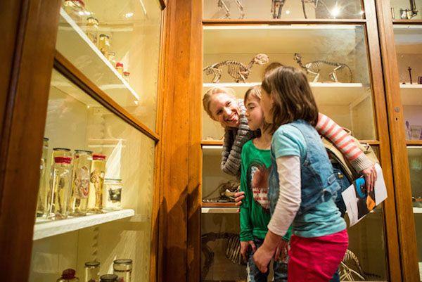 Interessant voor jong en oud bij Universiteitsmuseum Utrecht https://www.fijnuit.nl/1140/universiteitsmuseum-utrecht