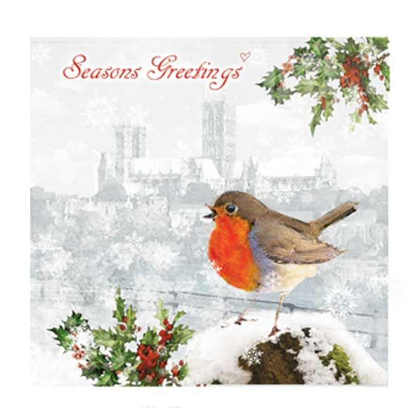 Robin in Lincoln Christmas Card