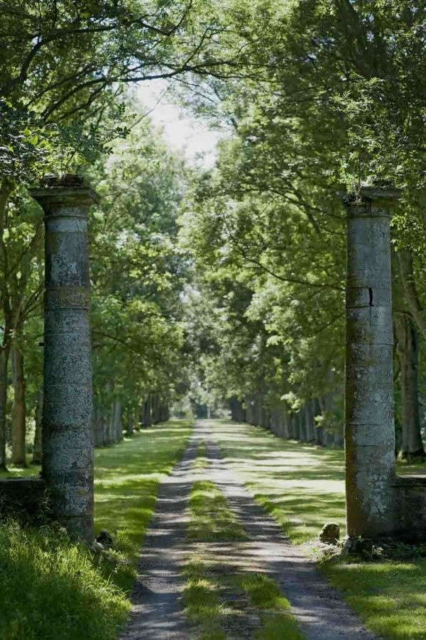A  rural driveway in Normandy… Photographer Vincent Thibert