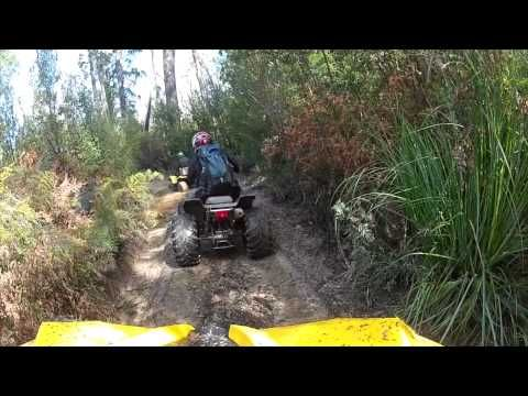 Can Am Renegade 500, Suzuki 500 Vinson & Yamaha 350 Warrior