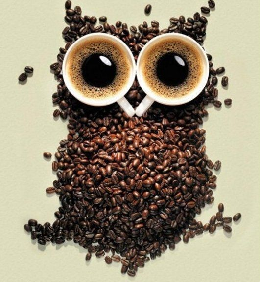Google Image Result for http://1.cdn.tapcdn.com/images/thumbs/taps/2012/07/coffee-owl-meme-lol-humor-funny-pictures-funny-photos-funny-2aabcae4-sz531x577-animate.jpg
