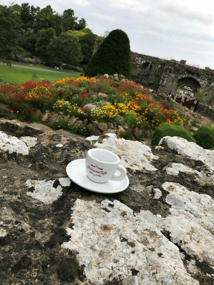Goriziana Caffe at LEEDS CASTLE (UNITED KINGDOM)...and the Queen said: LOVE COFFEE MAKE IT GOOD!