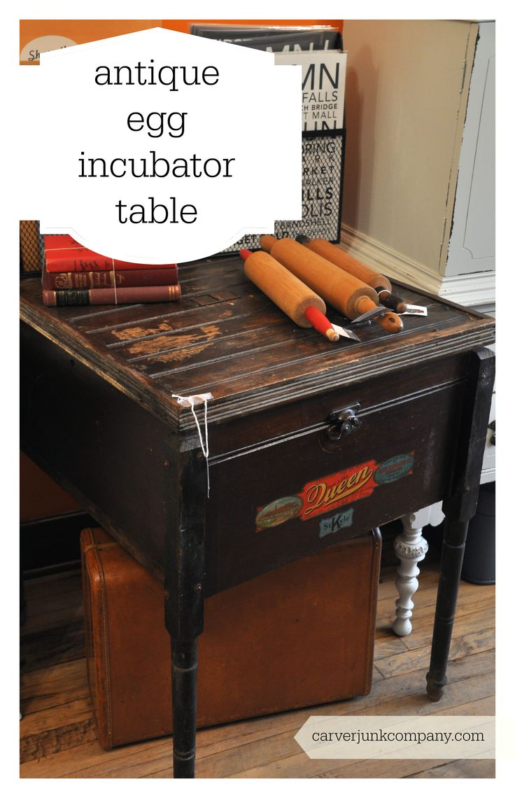 Cabinet Incubator Kit 141 Best Images About Incubadoras On Pinterest Homemade Chicken