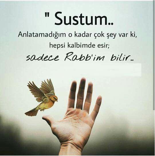 """""""Sustum...."""