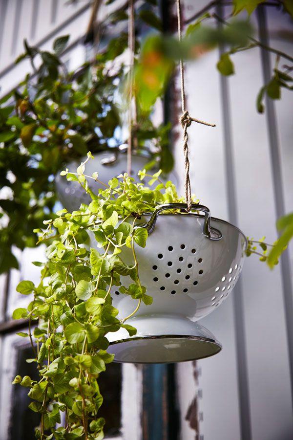 Tuinieren vanaf je balkon | Woonguide.nl #garden #veggies #food #ikea