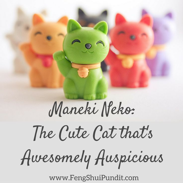 The 25 best feng shui lucky cat ideas on pinterest feng shui lucky plants feng shui love - Attractive feng shui interiors bring love prosperity ...