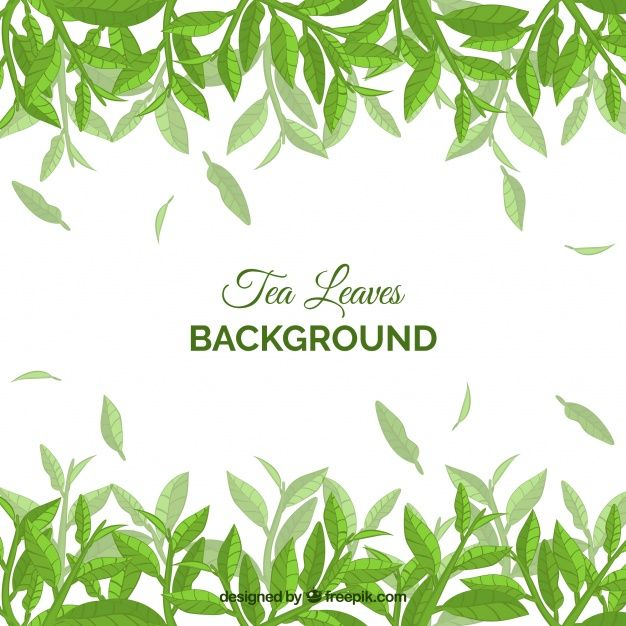Download Tea Leaves Background With Plants For Free Leaf Background Tea Leaves Illustration Leaves Illustration