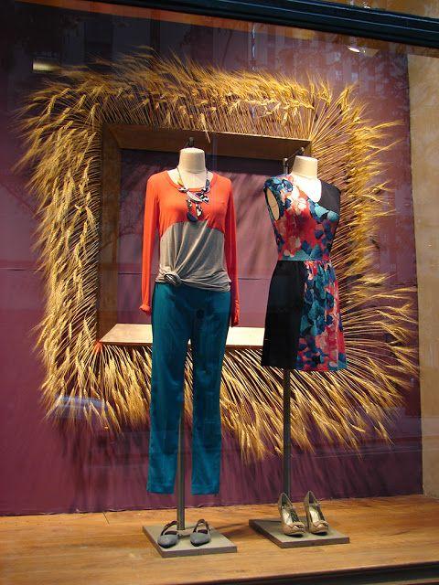 autumn wheat window display