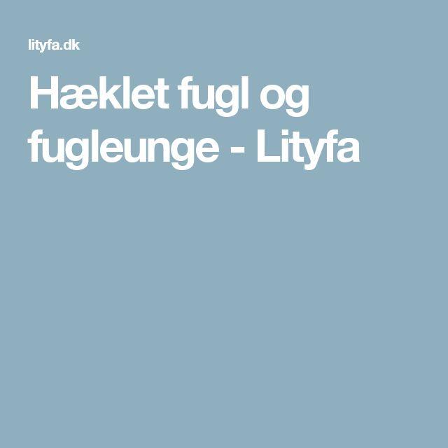 Hæklet fugl og fugleunge - Lityfa