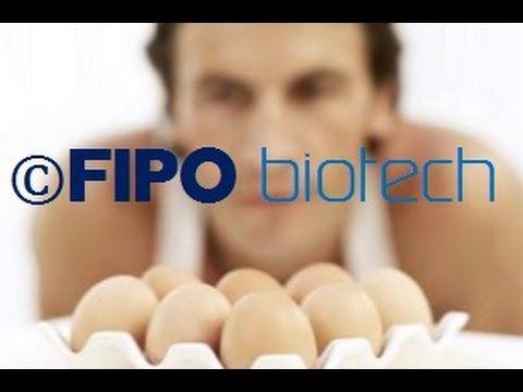 Proteina Huevo liquido ECOLOGICO huevina clara de huevo yema pasteurizad...