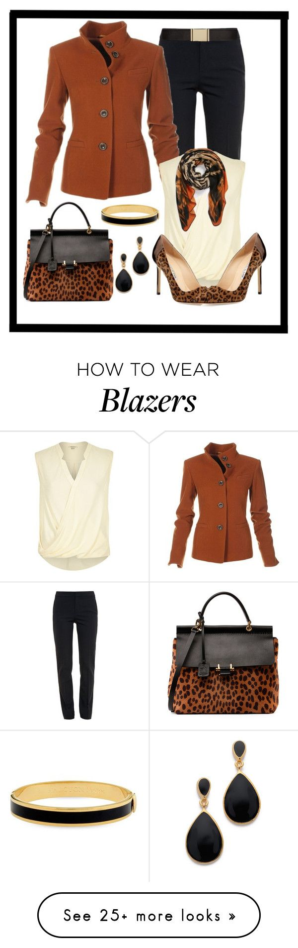 """""""Untitled #799"""" by gallant81 on Polyvore featuring Chloé, River Island, Lanvin, Halcyon Days, Kenneth Jay Lane and Balmain"""