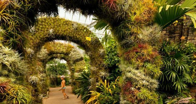 Consider it art! Charlotte NC botanical gardens, parks, farmers markets, nature centers | Charlotte NC Travel & Tourism