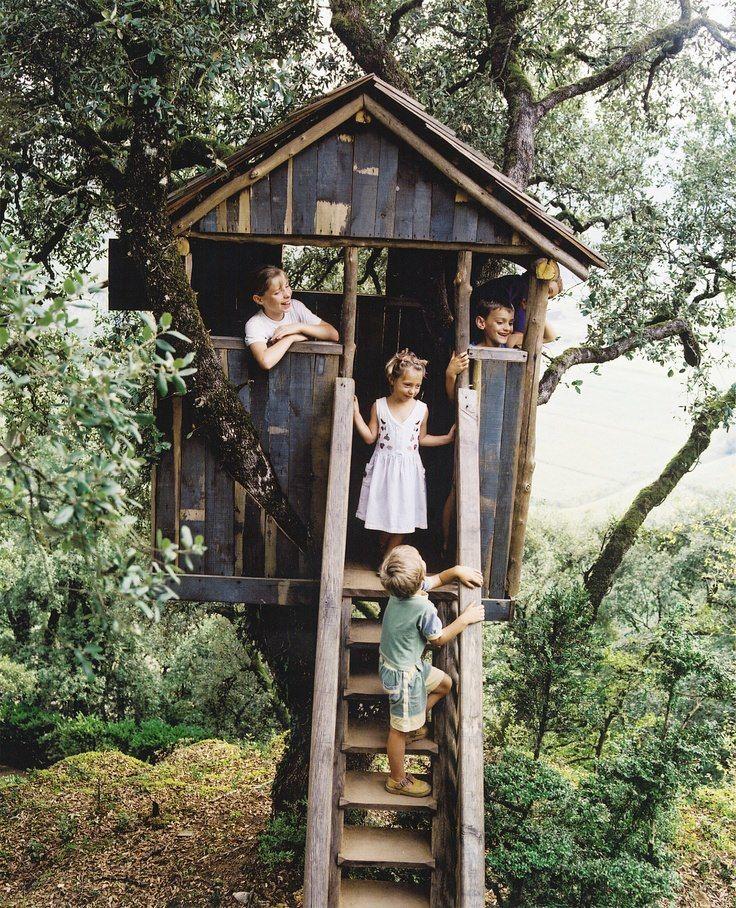 Tree house kids treehouse ideas pinterest house for Treeless treehouse