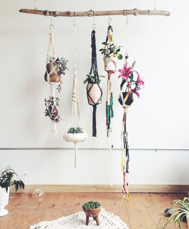 Macarame plant hangers drop from Driftwood branch